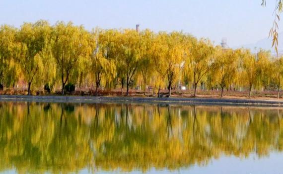 張掖:深秋潤泉湖景色美